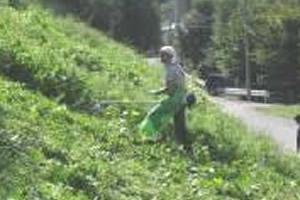 おやじの会:草刈り2011